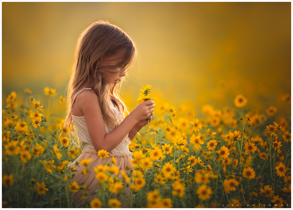 Golden Daydreams (© Lisa Holloway)