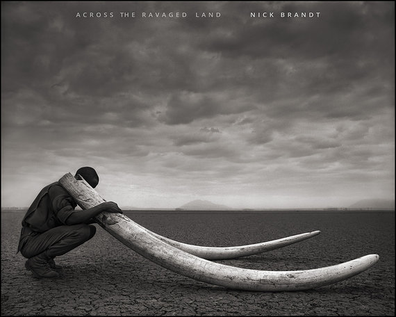 Nick Brandt – Across the ravaged land
