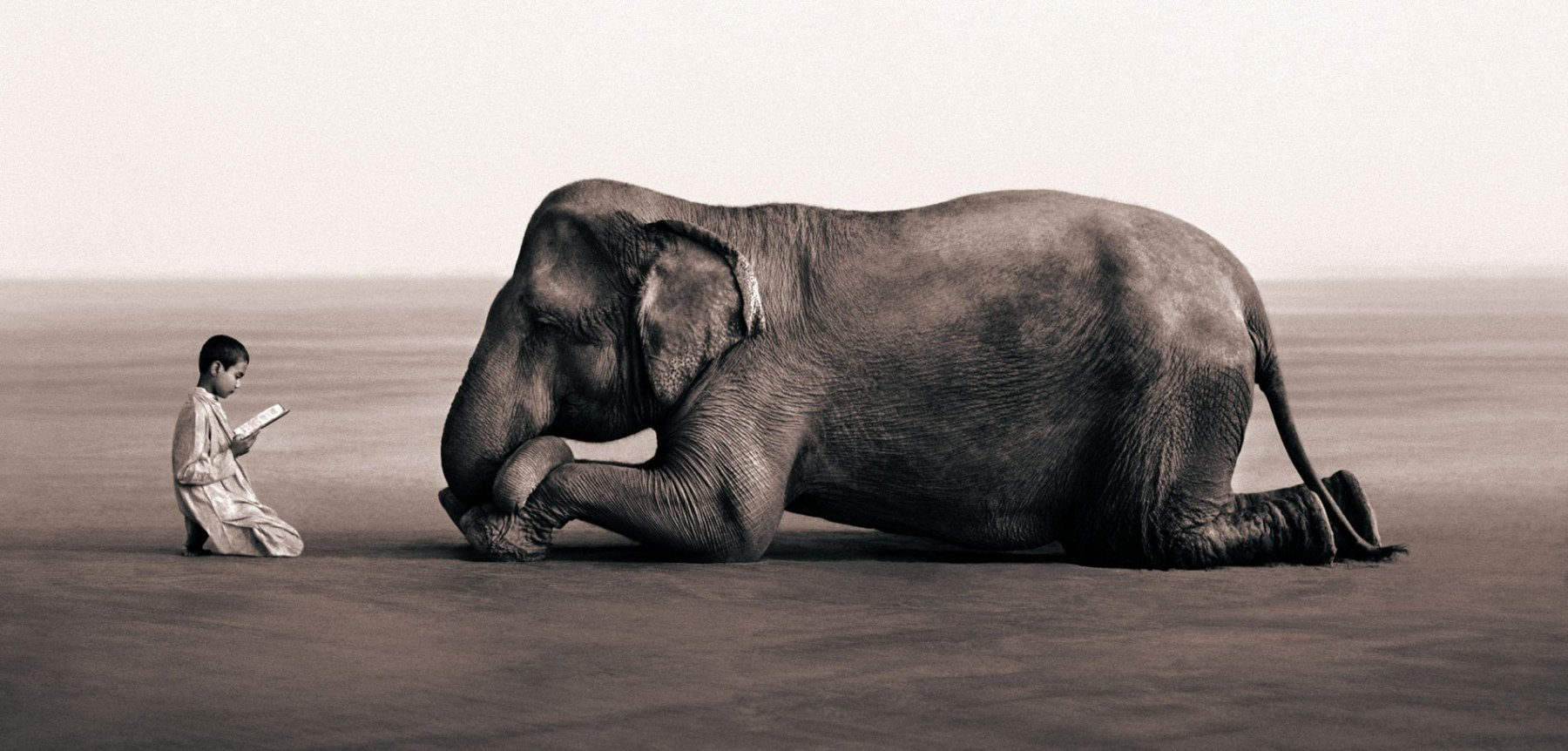 Z cyklu Ashes and Snow (© Gregory Colbert)